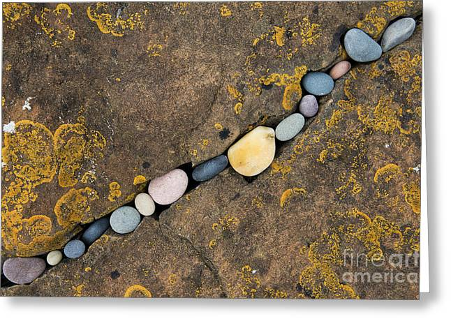 Pebbles Greeting Cards - Pebbles and Rock Greeting Card by Tim Gainey
