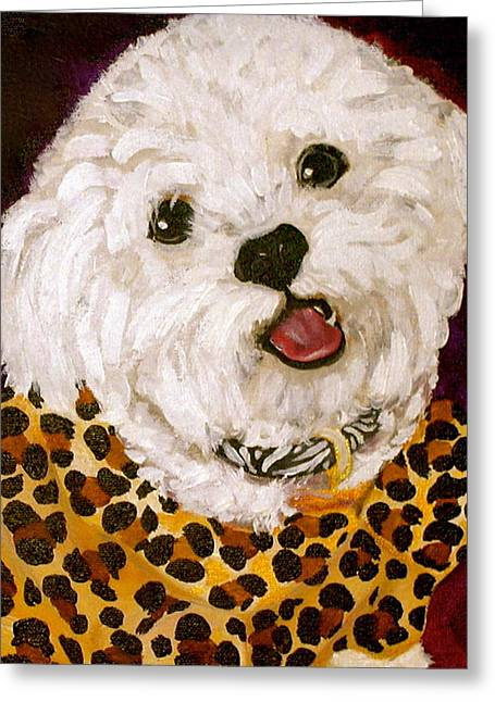 White Maltese Greeting Cards - Pebbles Greeting Card by Debi Starr