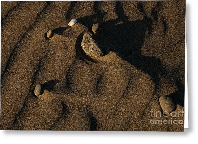 Sand Patterns Greeting Cards - Pebbles in the Sand Greeting Card by J G Adams