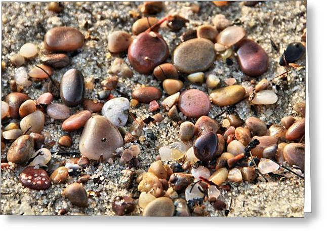 Pebbles Greeting Cards - Pebbles On The Beach Greeting Card by Dan Sproul