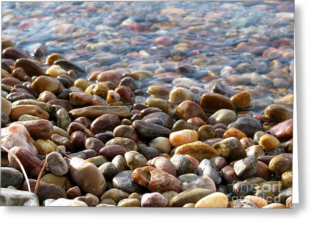 Pebbles On The Shore Greeting Card by Leone Lund