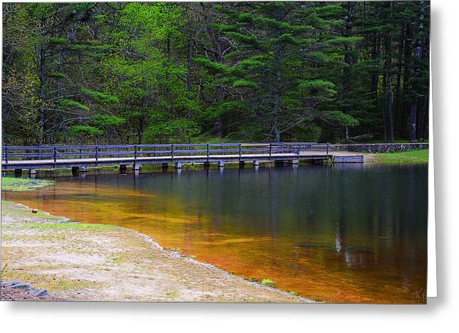 Trout Fishing Greeting Cards - Peck Pond Greeting Card by Lourry Legarde