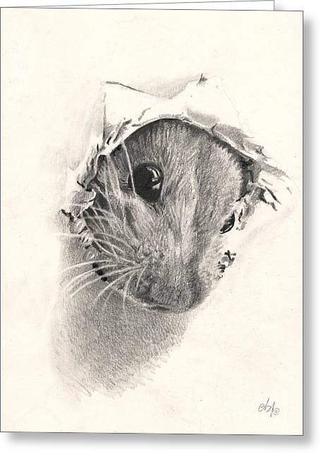 Hyperrealistic Greeting Cards - Peeckaboo Greeting Card by Bianca Ferrando