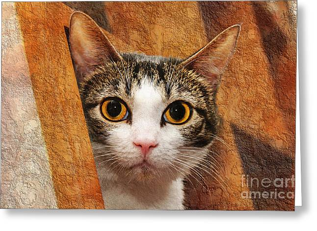Cute Kitten Mixed Media Greeting Cards - Peek A Boo I See You Greeting Card by Andee Design