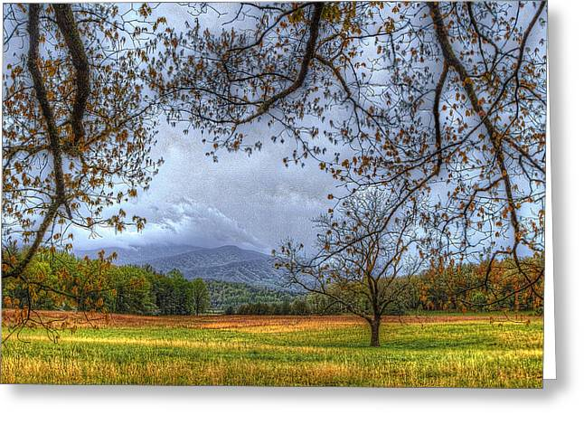 Recently Sold -  - Gatlinburg Tennessee Greeting Cards - Peeking At Mountains From Under Tree Greeting Card by Sherri Duncan
