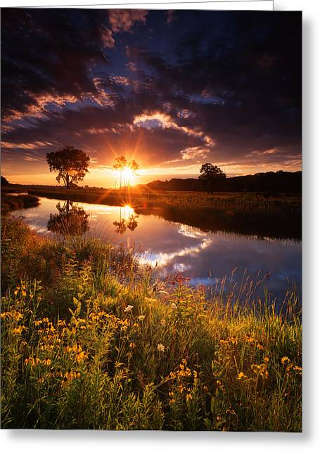 Hack-ma-tack National Wildlife Refuge Greeting Cards - Peep Show Greeting Card by Ray Mathis