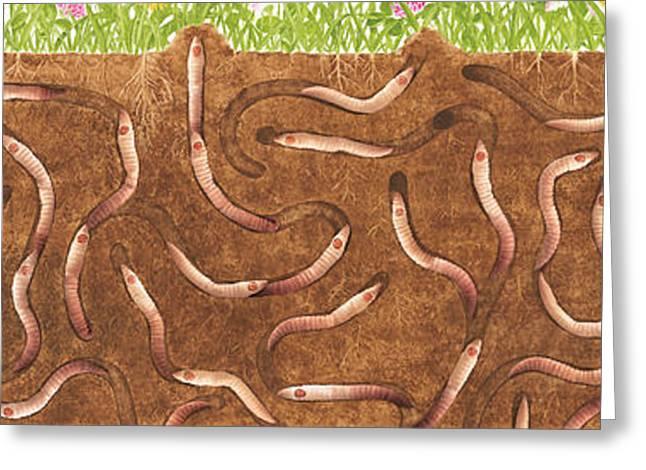 Peggy's Worm Farm Greeting Card by Anne Geddes