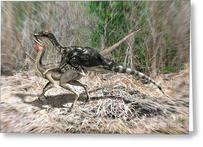 Ostrich Feathers Greeting Cards - Pelecanimimus Dinosaurs Mating Greeting Card by José Antonio Peñas