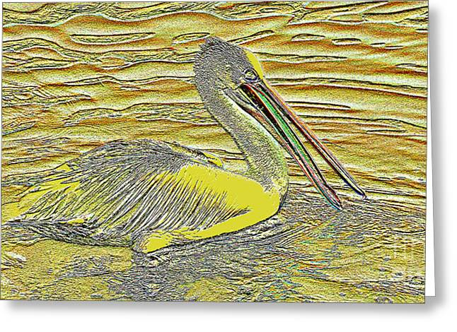 Pictures Of Sea Life Greeting Cards - Pelican 1 Greeting Card by Geoff Childs