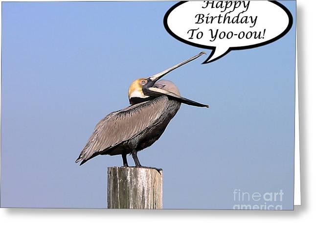 Seabirds Greeting Cards - Pelican Birthday Card Greeting Card by Al Powell Photography USA