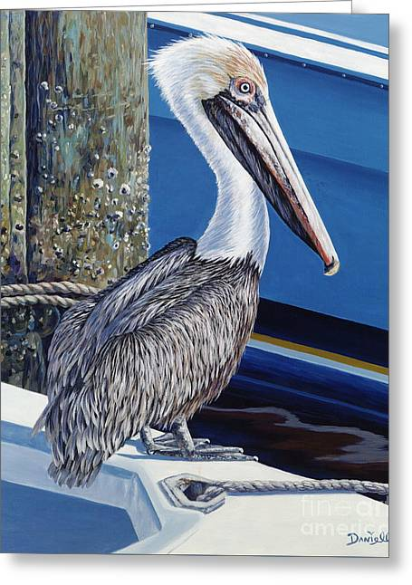 Nautical Birds Greeting Cards - Pelican Blues Greeting Card by Danielle  Perry