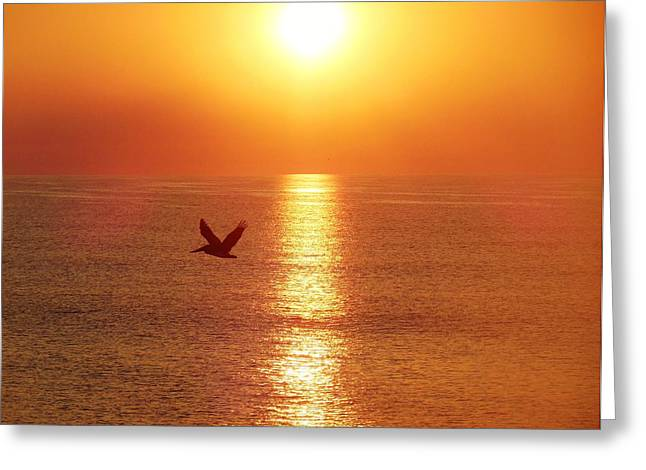 Sailboat Ocean Greeting Cards - Pelican Flight Hatteras 1 10/5 Greeting Card by Mark Lemmon