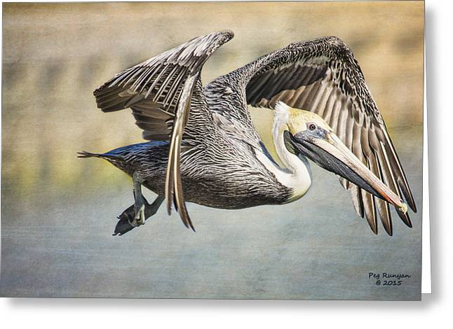 Pelicans Flying Over Water Greeting Cards - Pelican Flight Greeting Card by Peg Runyan