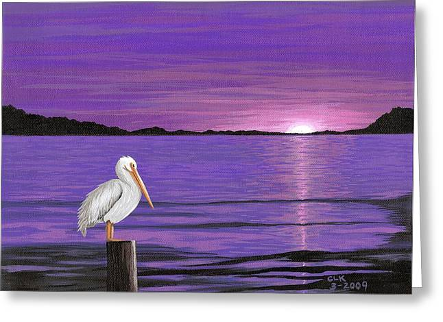 Cyndi Kingsley Greeting Cards - Pelican in Purple Sunset Greeting Card by Cyndi Kingsley