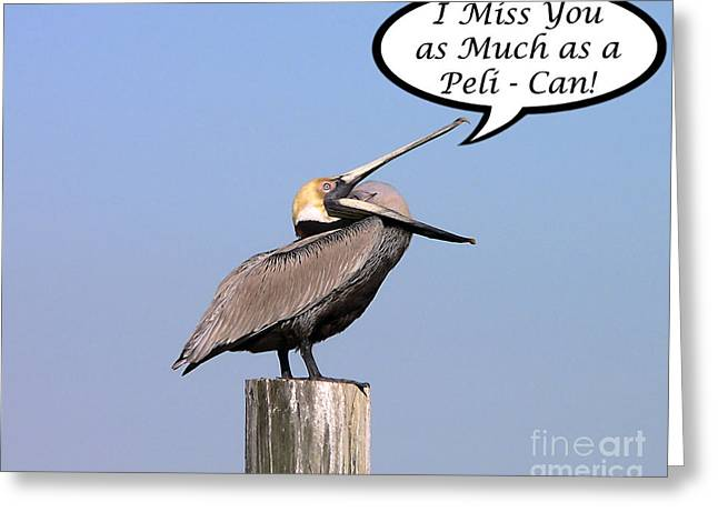 Pelican Miss You Card Greeting Card by Al Powell Photography USA