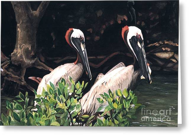 Pelican Paintings Greeting Cards - Pelican Pair Greeting Card by Barbara Jewell