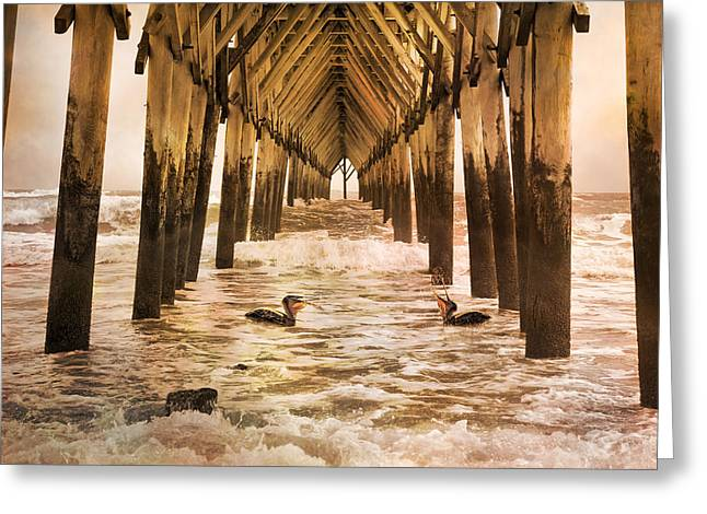 Surf City Greeting Cards - Pelican Paradise Greeting Card by Betsy C  Knapp