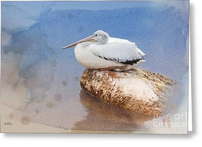 American White Pelican (pelecanus Erythrorhynchos) Greeting Cards - Pelican Peace Greeting Card by Betty LaRue