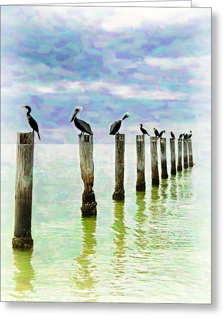 Stylistic Greeting Cards - Pelican Postcard Greeting Card by Vicki Jauron