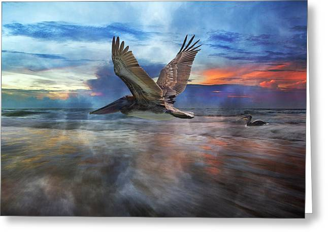 Foggy Ocean Greeting Cards - Pelican Sunrise Greeting Card by Betsy C  Knapp