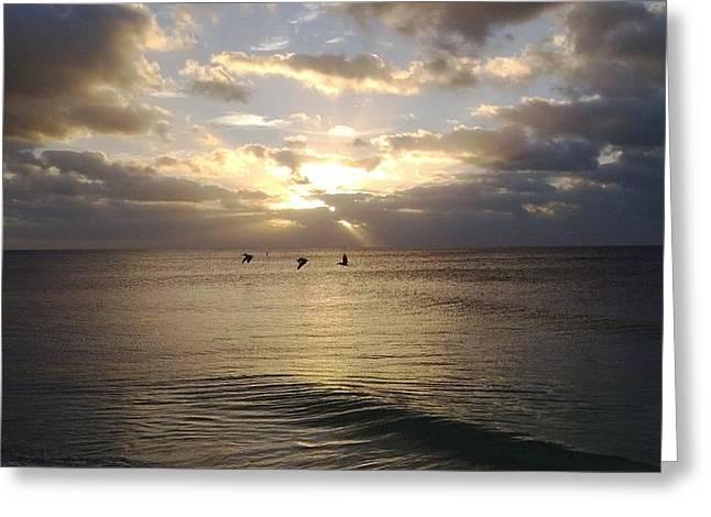Bahia Honda State Park Greeting Cards - Pelican Sunrise Greeting Card by Susan Sidorski