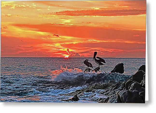 Up And Coming Greeting Cards - Pelicans at Cabo Sunrise Greeting Card by Marcia Colelli