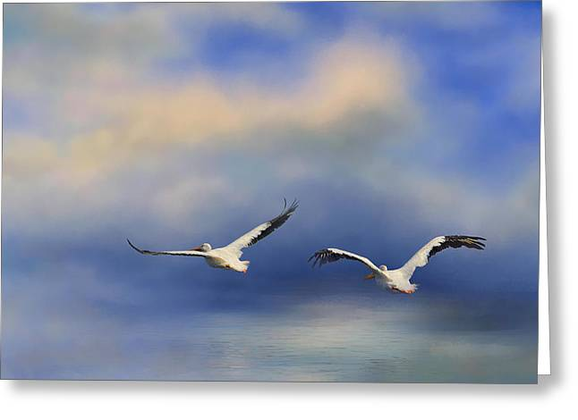 Flying White Pelicans Greeting Cards - Pelicans At Sea Greeting Card by Jai Johnson