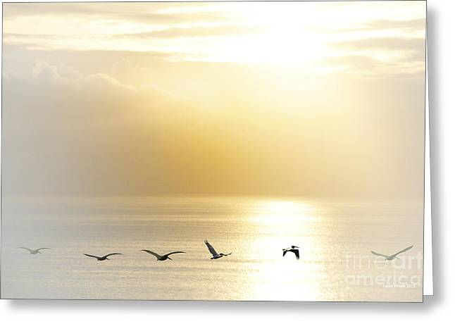 Pelicans Flying Over Water Greeting Cards - Pelicans over Malibu Beach California Greeting Card by Artist and Photographer Laura Wrede