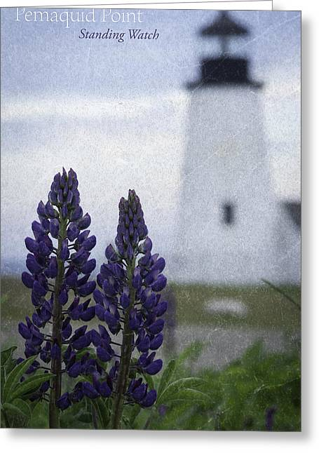 Maine Lighthouses Greeting Cards - Pemaquid lighthouse Greeting Card by Chad Tracy