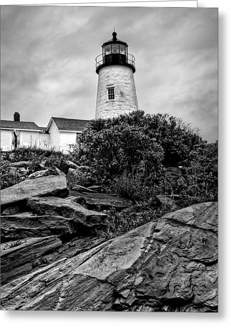 Maine Lighthouses Greeting Cards - Pemaquid Point Greeting Card by Nikolyn McDonald