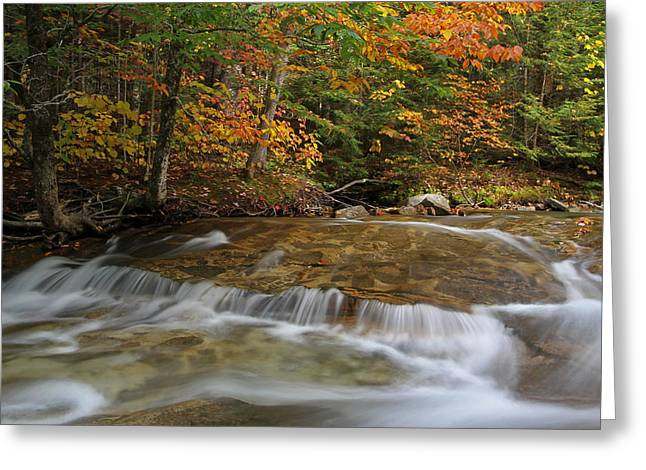 Beautiful Creek Photographs Greeting Cards - Pemigewasset River Cascades in Autumn Greeting Card by Juergen Roth