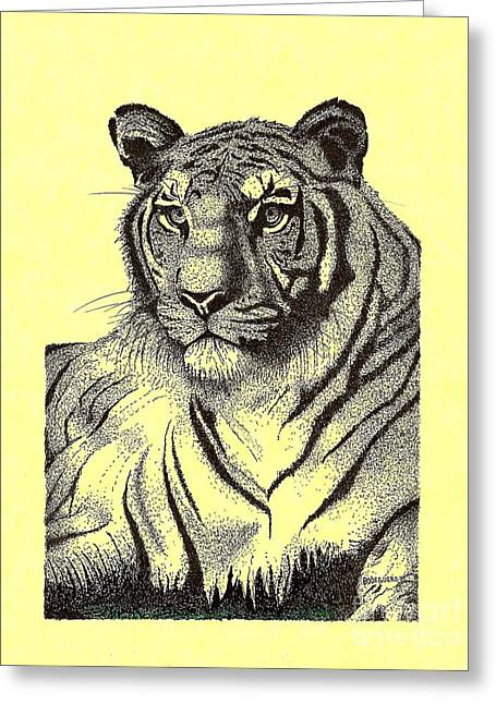 Wild Life Drawings Greeting Cards - Pen and Ink drawing of Royal Tiger Greeting Card by Mario  Perez