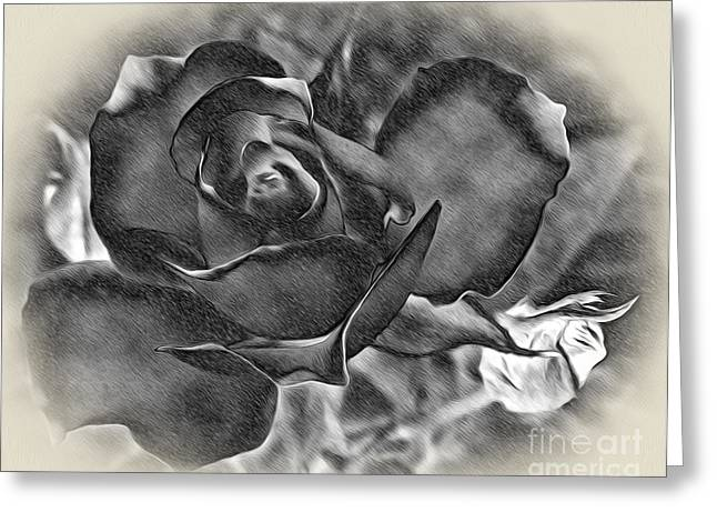 Pencil And Ink Rose Greeting Card by Kaye Menner