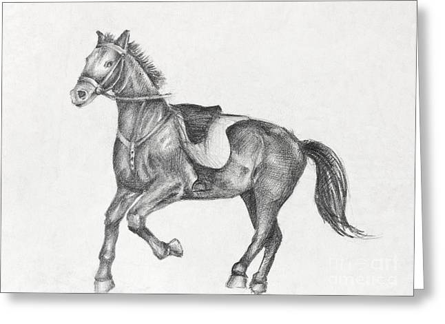Pencil Drawing Of A Running Horse Greeting Card by Kiril Stanchev