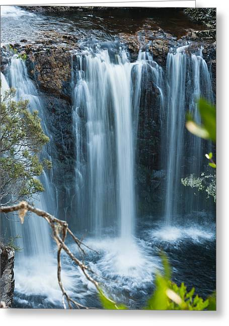 Cradle-mountain Greeting Cards - Pencil Pine Falls Cradle Mountain Greeting Card by Ulrich Schade