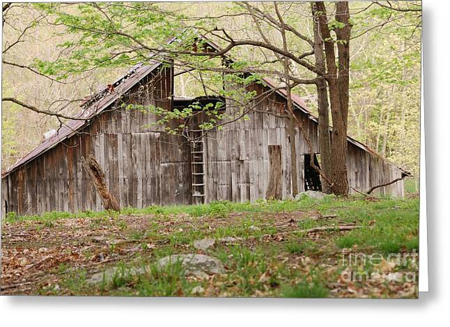 Pendleton County Barn Greeting Card by Randy Bodkins