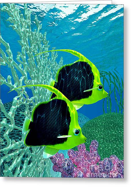Sea Life Digital Greeting Cards - Pennant Coralfish Greeting Card by Corey Ford
