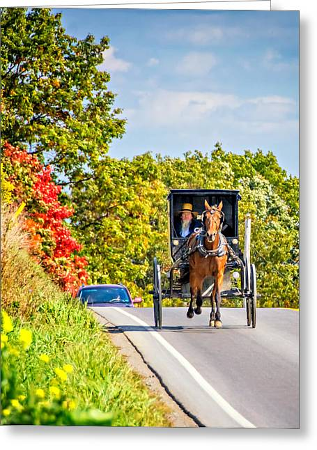 Indiana Photography Greeting Cards - Pennsylvania Amish Greeting Card by Steve Harrington