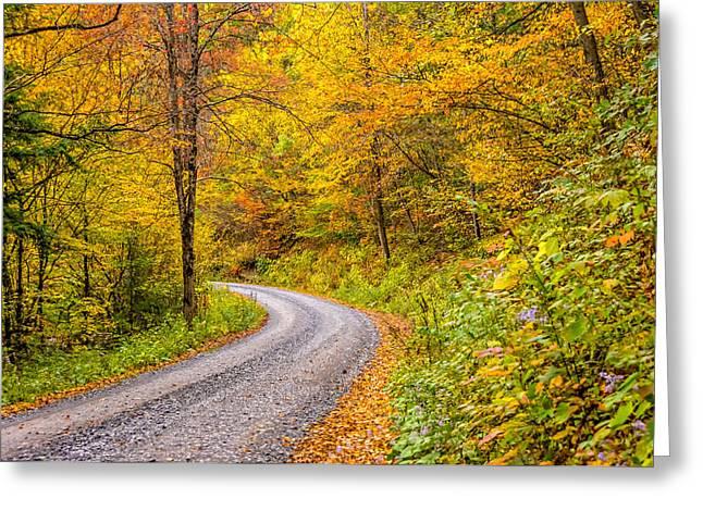 Gravel Road Greeting Cards - Pennsylvania Back Road 2 Greeting Card by Steve Harrington