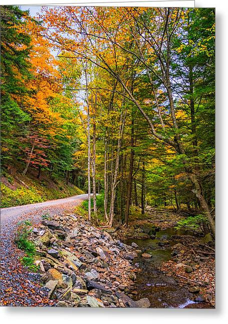 Gravel Road Greeting Cards - Pennsylvania Back Road 3 Greeting Card by Steve Harrington