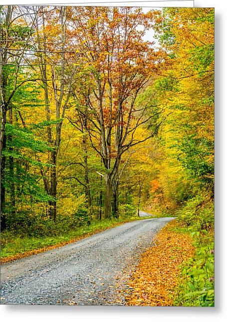 Gravel Road Greeting Cards - Pennsylvania Back Road Greeting Card by Steve Harrington