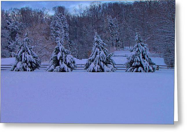 Pennsylvania Photographs Greeting Cards - Pennsylvania Snowy Wonderland Greeting Card by David Dehner