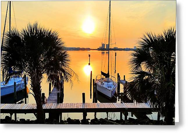 Yellow Sailboats Greeting Cards - Pensacola Beach Harbor Greeting Card by JC Findley