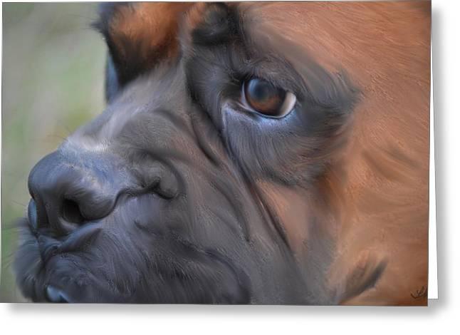 Pensive Boxer Greeting Card by Linda Koelbel