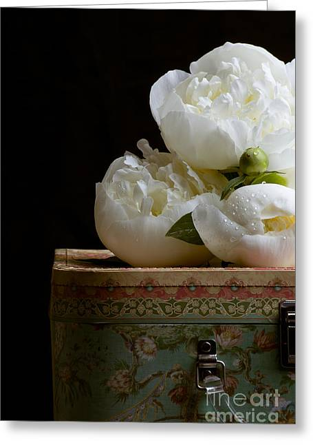 Hat Box Greeting Cards - Peony flowers on old hat box Greeting Card by Edward Fielding