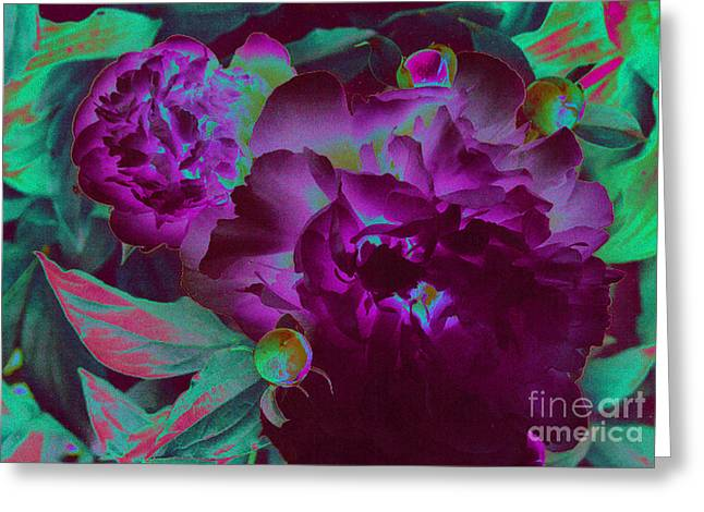 First Love Greeting Cards - Peony Passion Greeting Card by First Star Art
