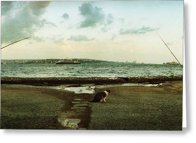 Marmara Greeting Cards - People Fishing In The Bosphorus Strait Greeting Card by Panoramic Images