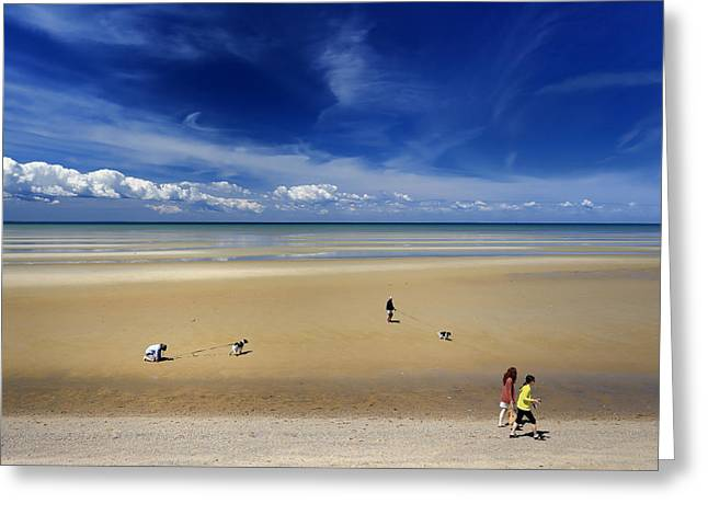 Calming Beach Photos Greeting Cards - People With Dogs On The Beach Greeting Card by Dapixara Art