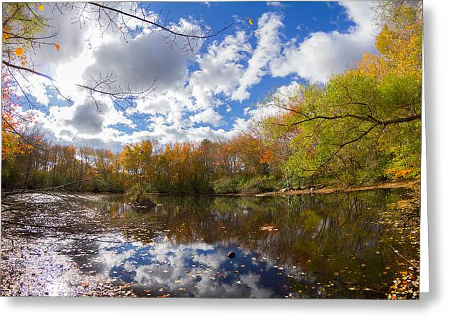 Nature Center Pond Greeting Cards - Pequotsepos Duck Pond Reflection   Greeting Card by Kirkodd Photography Of New England