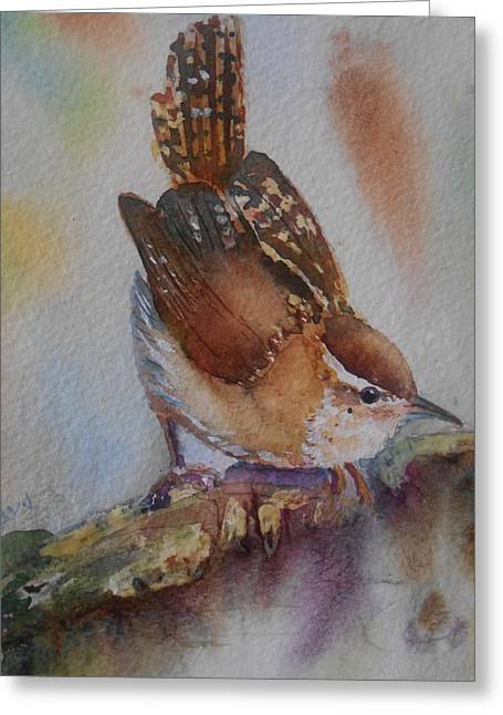 Carolina Wren Greeting Cards - Perched Greeting Card by Patricia Pushaw